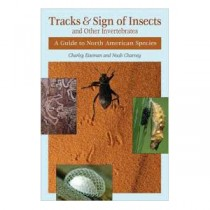 Tracks & Sign of Insects and Other Invertebrates